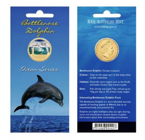 Bottlenose Dolphin Australian Ocean Series
